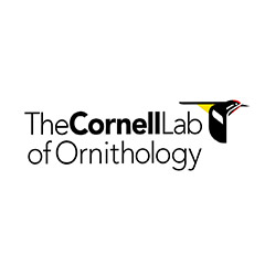 Cornell Ornithology